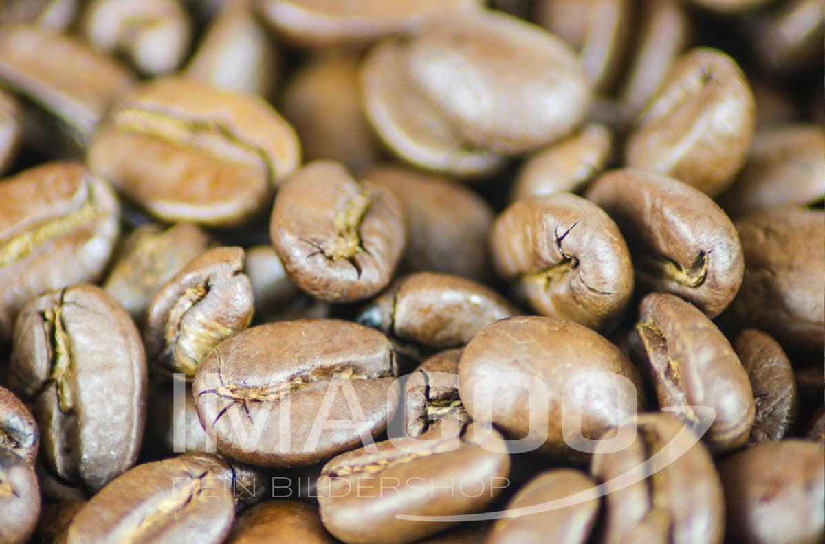 101009 – Kaffeebohnen